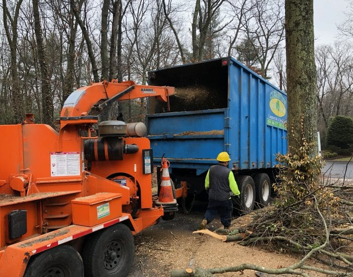 tree chipper machine Nassau County